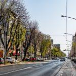 maksimirska-cesta-06042020-23