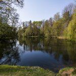 maksimirska-jezera-15042019-40